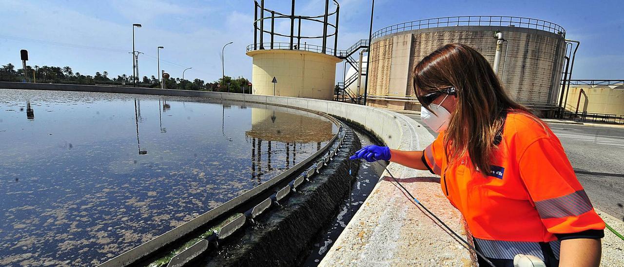 Una operaria revisa este viernes el tratamiento del agua en la depuradora de Algorós.  | MATÍAS SEGARRA