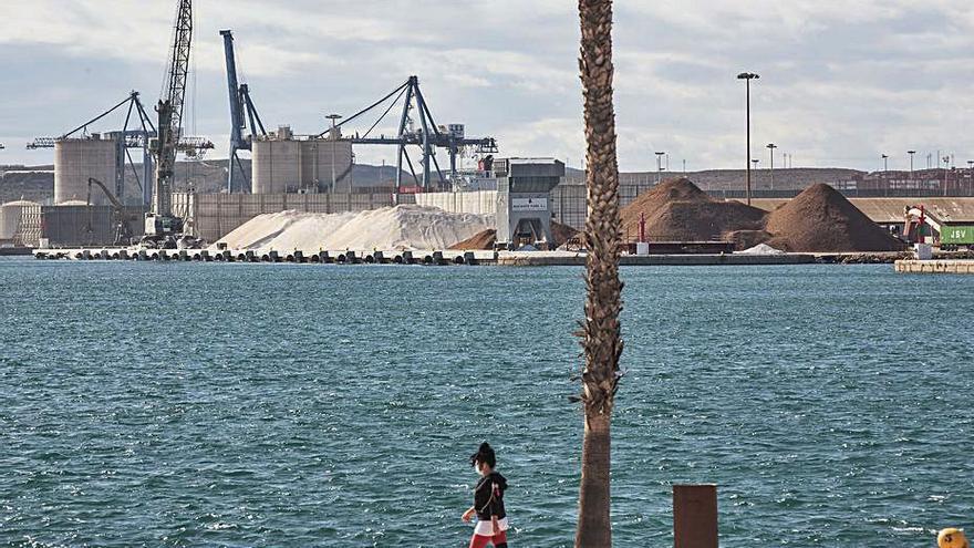La Plataforma del Puerto exige parar la carga y descarga de graneles