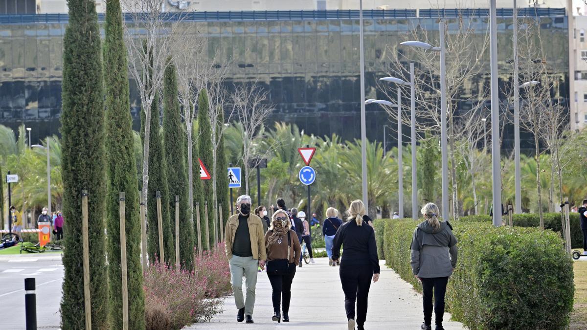 Campus de la UMH en Elche