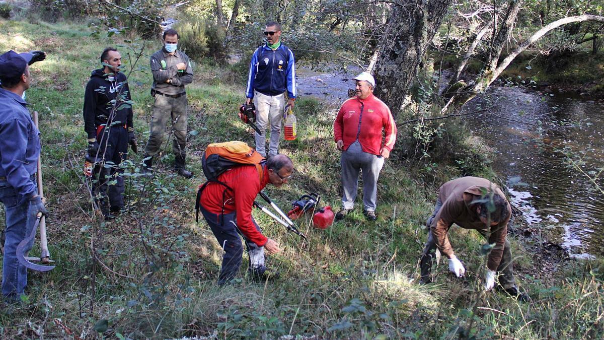 Distintos momentos de las labores de limpieza de un tramo de la senda del río Negro a cargo de voluntarios en Manzanal de los Infantes.  | Araceli Saavedra