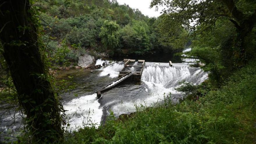 El río Lérez triplica el caudal de hace un año y llega al otoño con el mejor estado de la última década