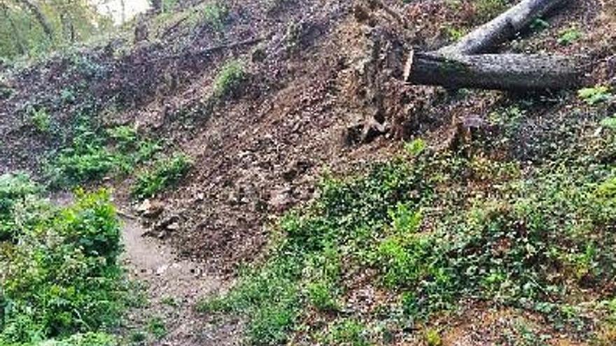 Moaña atajará, con troncos y vegetación, un derrumbe de tierra sobre el río Rialdarca