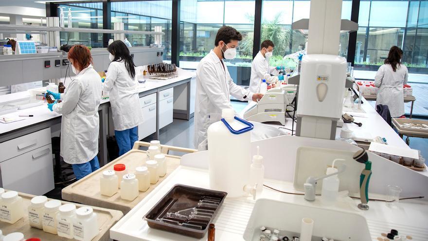 Global Omniun lanza un sistema para hacer PCR en grupo de hasta 20 personas