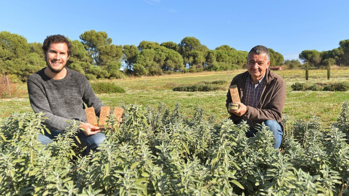 En Guillem és administratiu i productor agrícola i en Pere, agricultor.