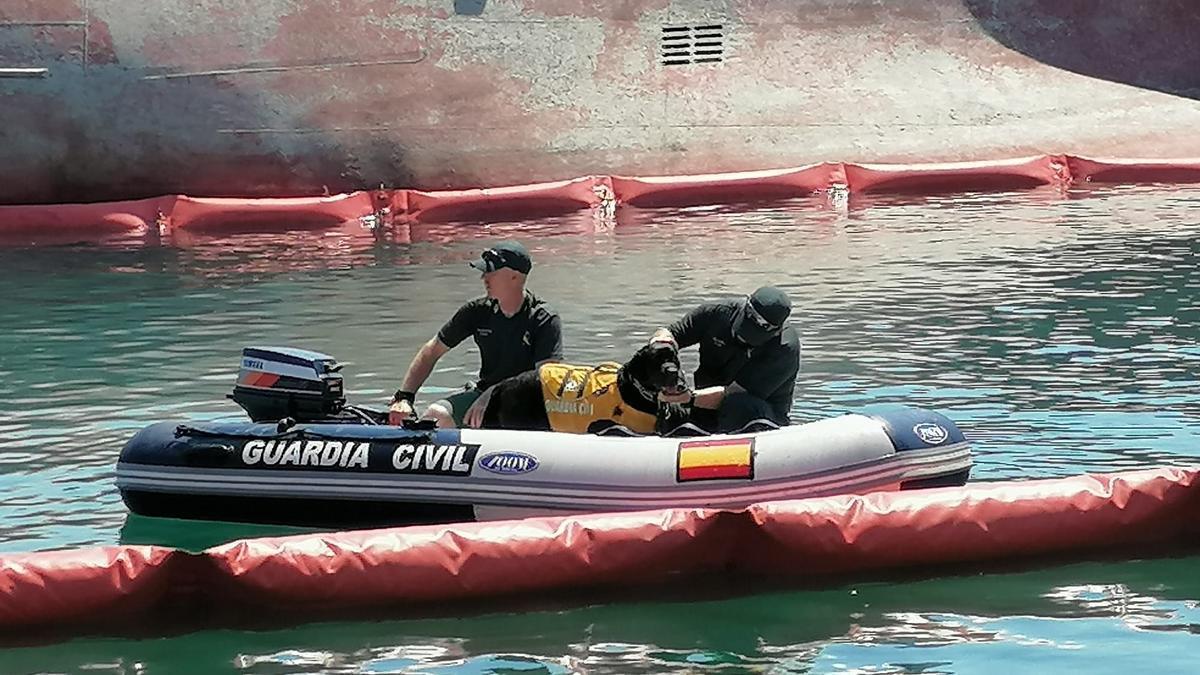 Imagen de uno de los labradores subido a bordo de una lancha semirrígida de la Guardia Civil este miércoles.