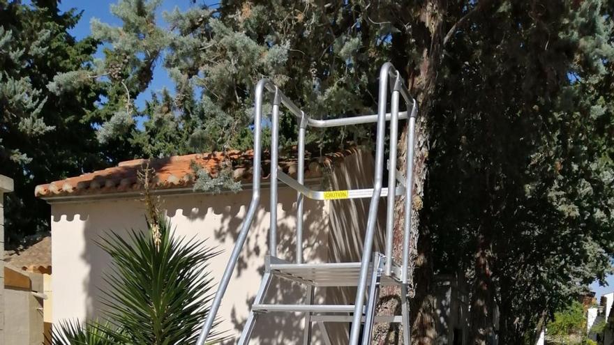 El Ayuntamiento de Jumilla renueva las papeleras y las escaleras móviles del Cementerio