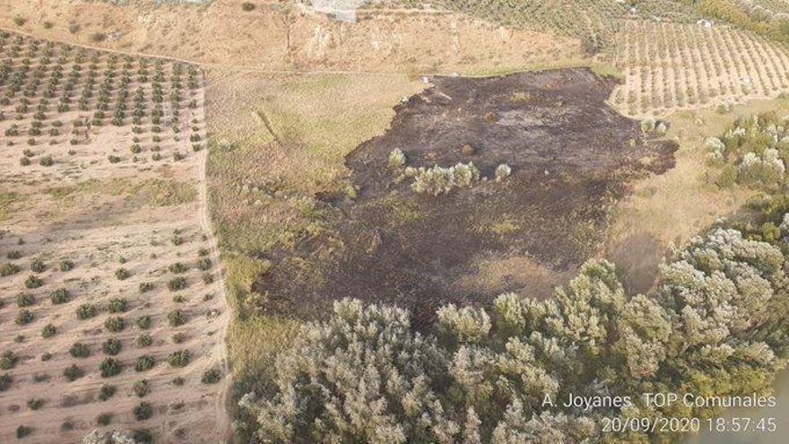 Controlado un incendio forestal en el término municipal de Montoro