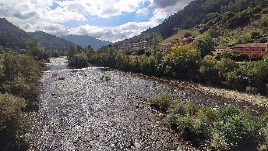 Los ecologistas plantean mutar Reicastro en una reserva natural con playa fluvial