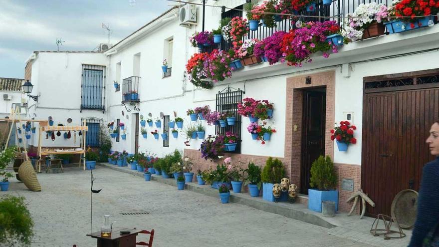 Cañete implica a los ciudadanos en una fusión del arte y las flores