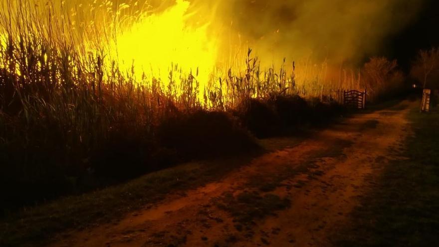 Alarma entre los vecinos tras declararse un incendio en s'Albufera