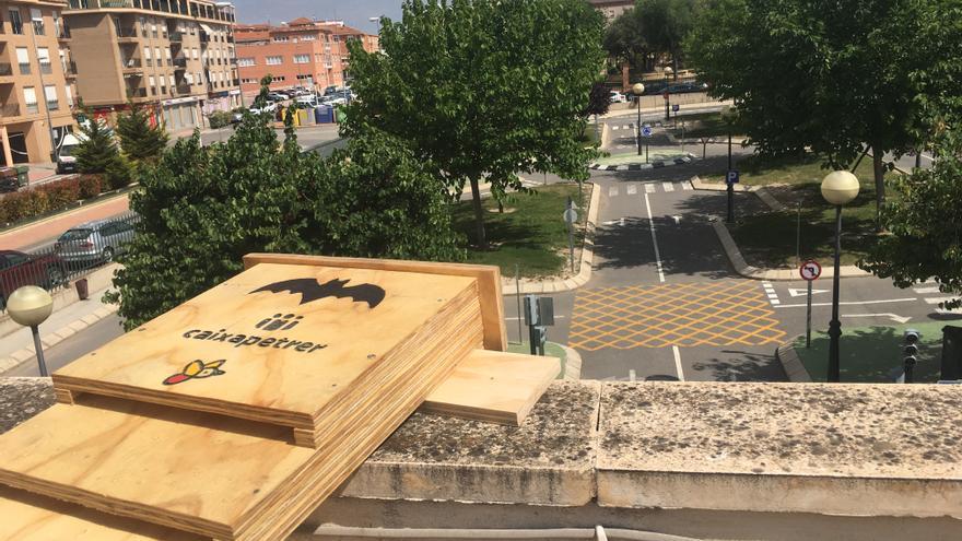 Petrer instala 33 refugios para murciélagos en parques y edificios públicos para combatir los insectos