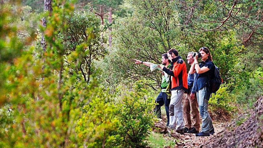 El Solsonès participarà per primer cop al Festival de Senderisme dels Pirineus