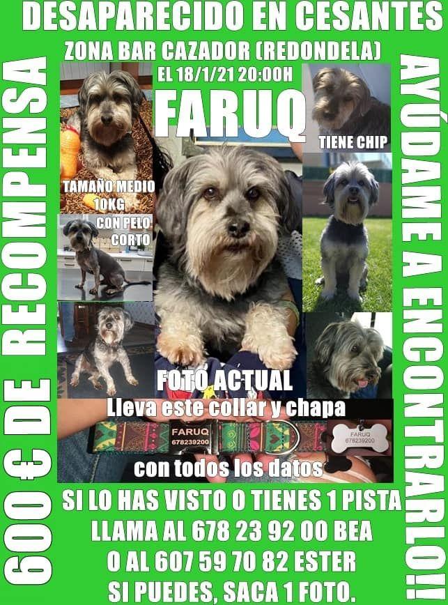 Cartel de búsqueda de Faruq.