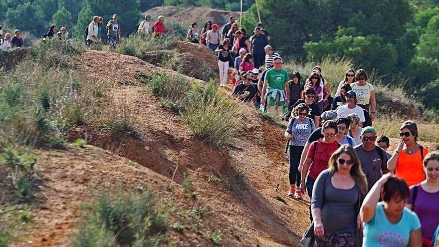 El Consell rechaza ampliar el Parc del Turia con los lindes urbanos de les Moles