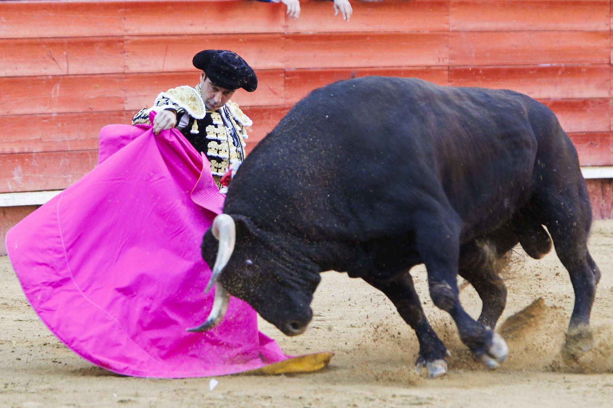 La trayectoria de Enrique Ponce en imágenes: 30 años en la cumbre del toreo