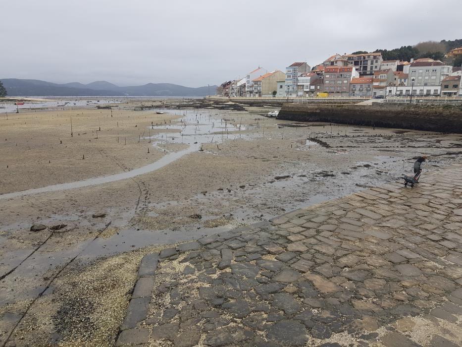 """""""Mareas vivas"""" en Galicia."""