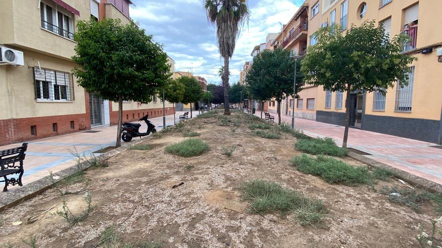 El PSOE critica que la falta de mantenimiento obliga a volver a invertir en zonas verdes
