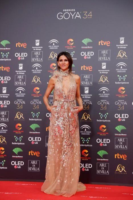 Los Premios Goya 2020