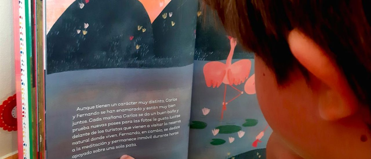 Un niño lee la historia de Carlos y Fernando, dos flamencos machos enamorados, en el libro 'Familias fabulosas'.