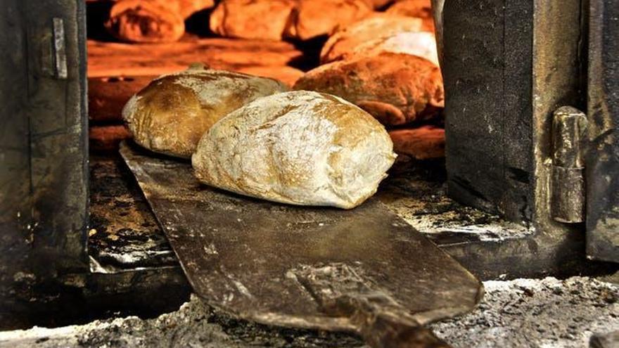 Diferencias entre el pan de hoy y el de antes