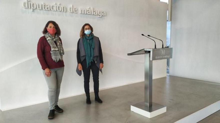 IU y Podemos trasladarán a Diputación la necesidad de mejorar las conexiones en los transportes públicos