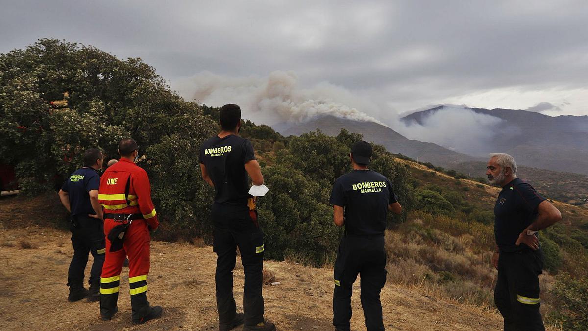Bomberos de Marbella y miembros de la UME observan el denso humo.