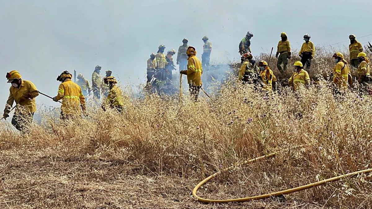 Personal de prevención contra incendios durante una sesión de formación.