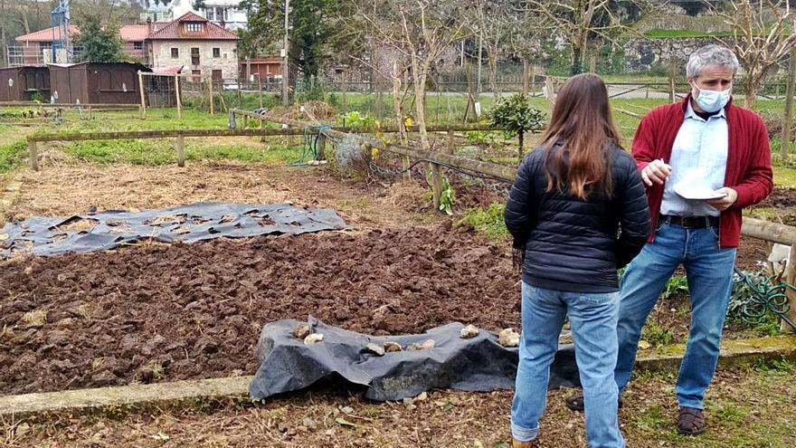 Llanes mantiene abierto el plazo para solicitar los huertos urbanos
