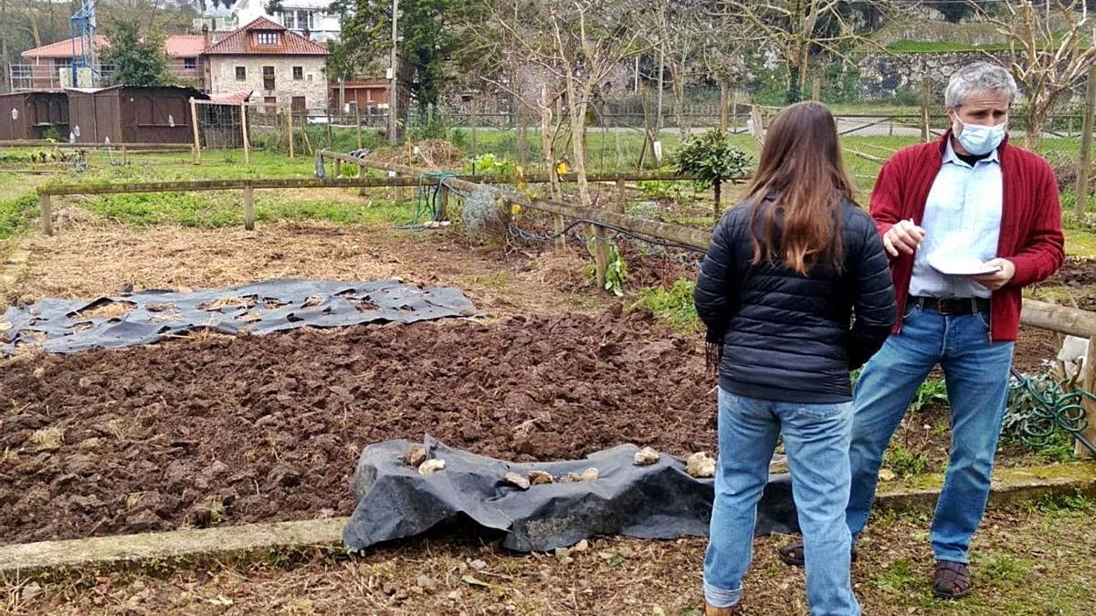 Llanes mantiene abierto el plazo para solicitar los huertos urbanos    R. P. T.