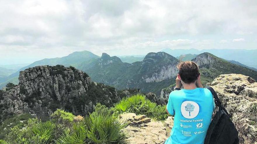 Una red de voluntarios vigilará las montañas