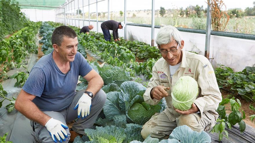 """La Fundación """"la Caixa"""" destinó 1,3 millones de euros al impulso de proyectos sociales dirigidos a personas vulnerables"""