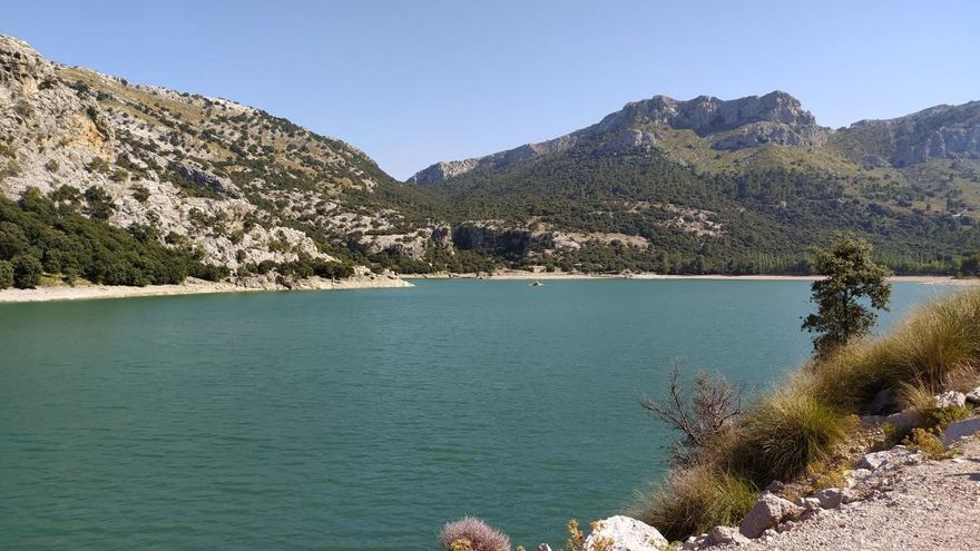 So steht es um die Wasserreserven auf Mallorca