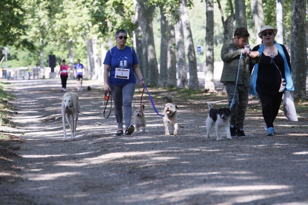 I Marxa Solidària Canina de Diari de Girona