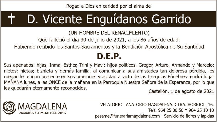 D. Vicente Enguídanos Garrido