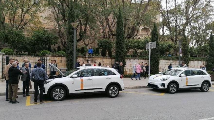 Erste Elektro-Taxis auf Mallorca in Betrieb