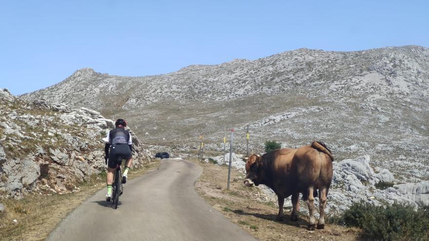 """El Angliru tendrá """"taller"""" para ciclistas"""