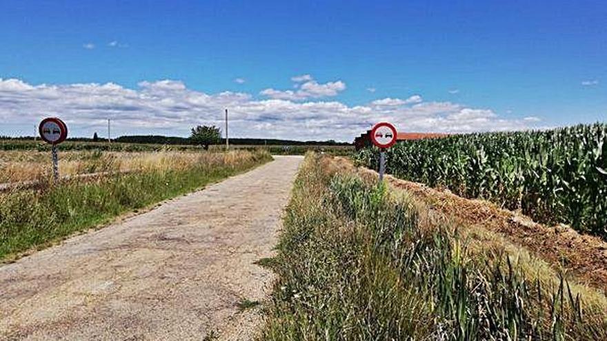 Estado actual de la carretera entre Santa Croya de Tera y Santibáñez de Tera. A. G.