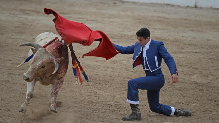 Palma de Mallorca darf sich stierkampffreie Stadt nennen