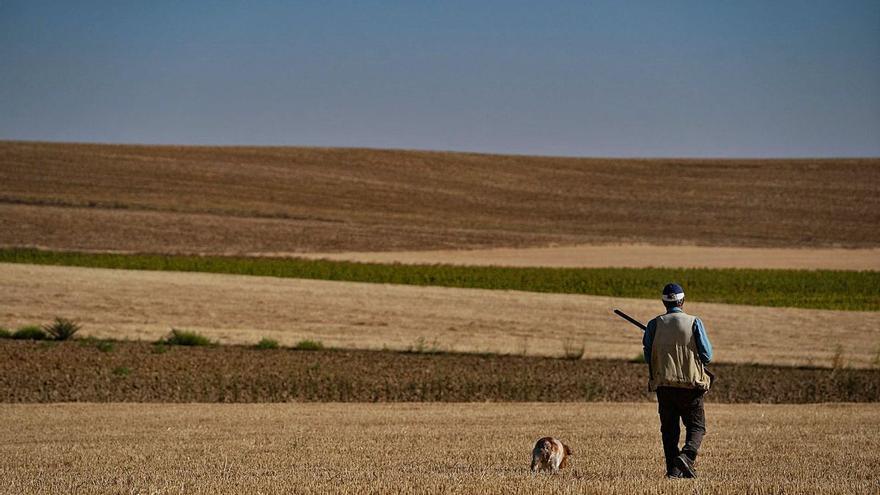 Comienza la temporada de caza: del domingo, 24 de octubre, hasta el 26 de enero de 2022