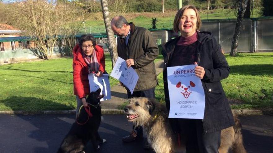El Ayuntamiento inicia una campaña sobre tenencia responsable de mascotas y adopción en lugar de compra