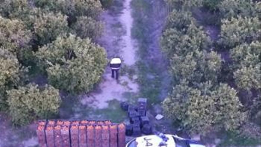 El dron de Algemesí frustra otro robo de 2.000 kilos de naranja ya recolectada