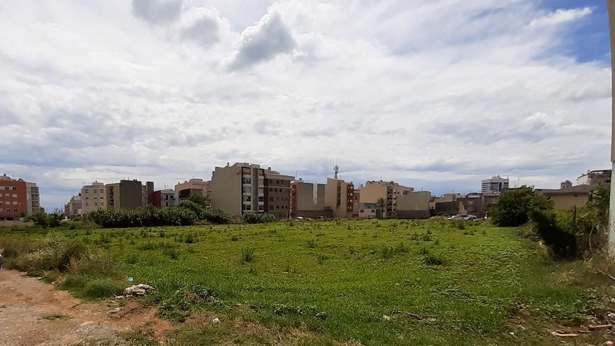 Benicarló redactará en septiembre el anteproyecto de la nueva escuela