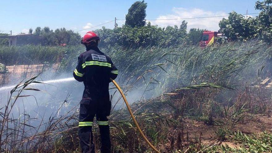 Un aparatoso incendio en una zona de marjal de Nules deja dos perros heridos con quemaduras