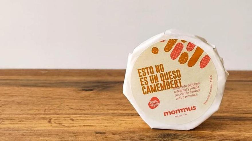 Un queso vegetal de la UMH de Elche, entre los mejores del mundo