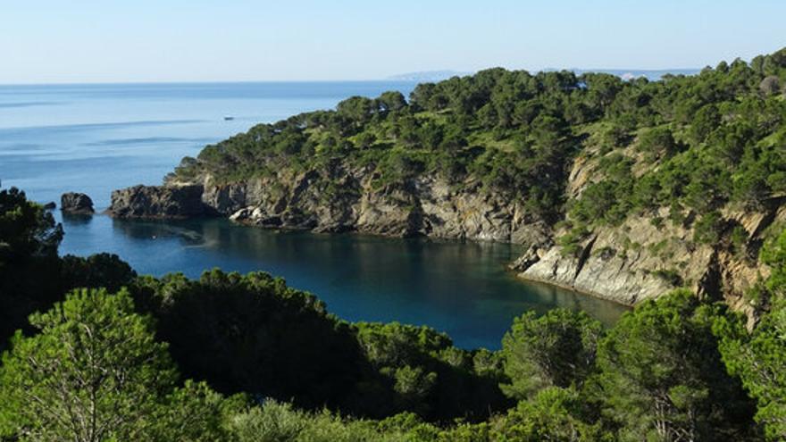 Front comú per difondre bones pràctiques en la navegació i el fondeig davant l'augment de visitants a la Costa Brava