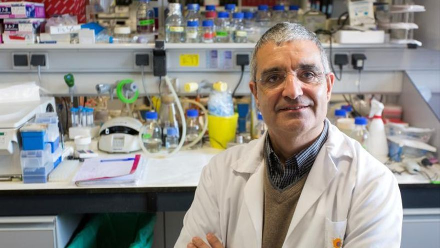 """Xosé R. Bustelo, vicerrector del Centro de Investigación del Cáncer de Salamanca: """"El covid está retrasando el diagnóstico de cáncer a unos 55.000 pacientes"""""""