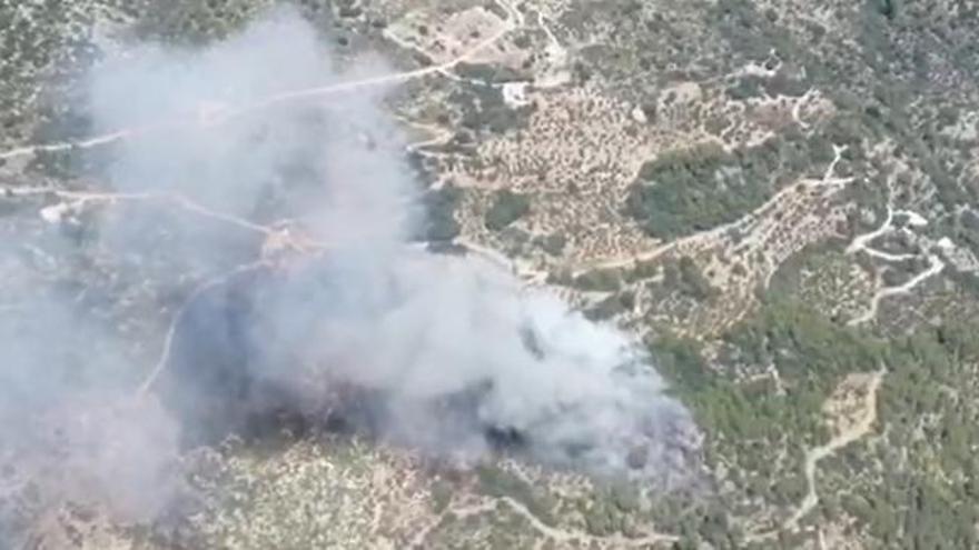 Incendio en una densa masa forestal de la Vall de Laguar