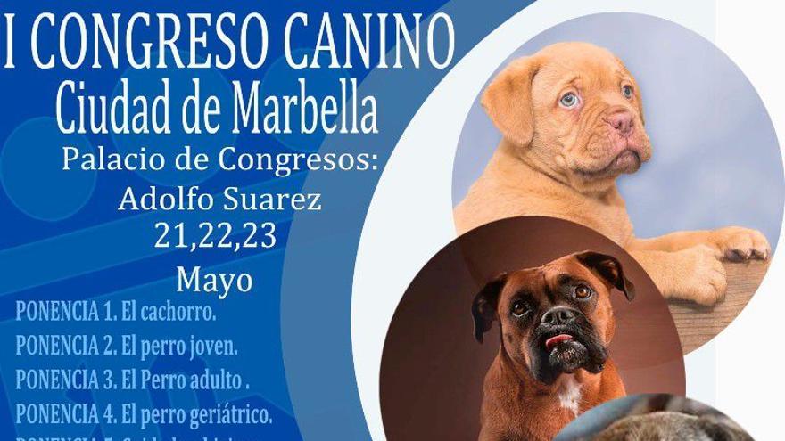 I Congreso canino