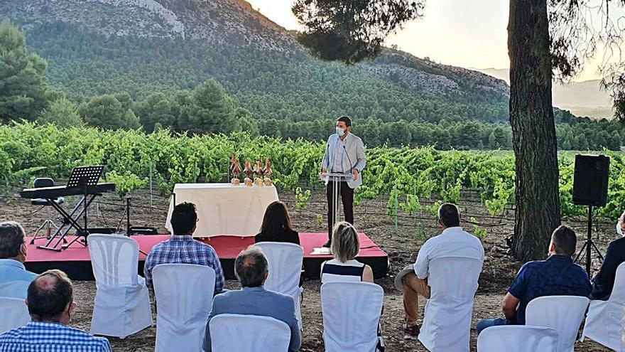 Apoyo al sector vitivinícola a través de la promoción y de ayudas a la reestructuración de los viñedos