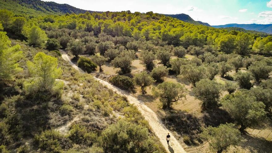 ASE reclamará con una marcha la creación del parque natural de Sierra Escalona